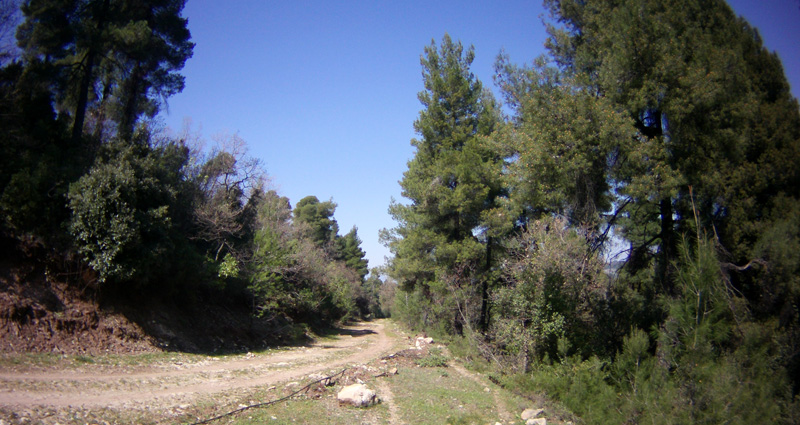 Hotel Altamar - Hiking and Cycling